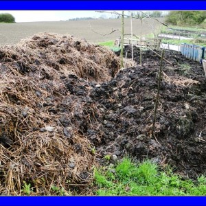 Animal Manure Composting