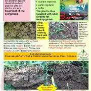 done_deal_Soil_activator_special_leaf_page2